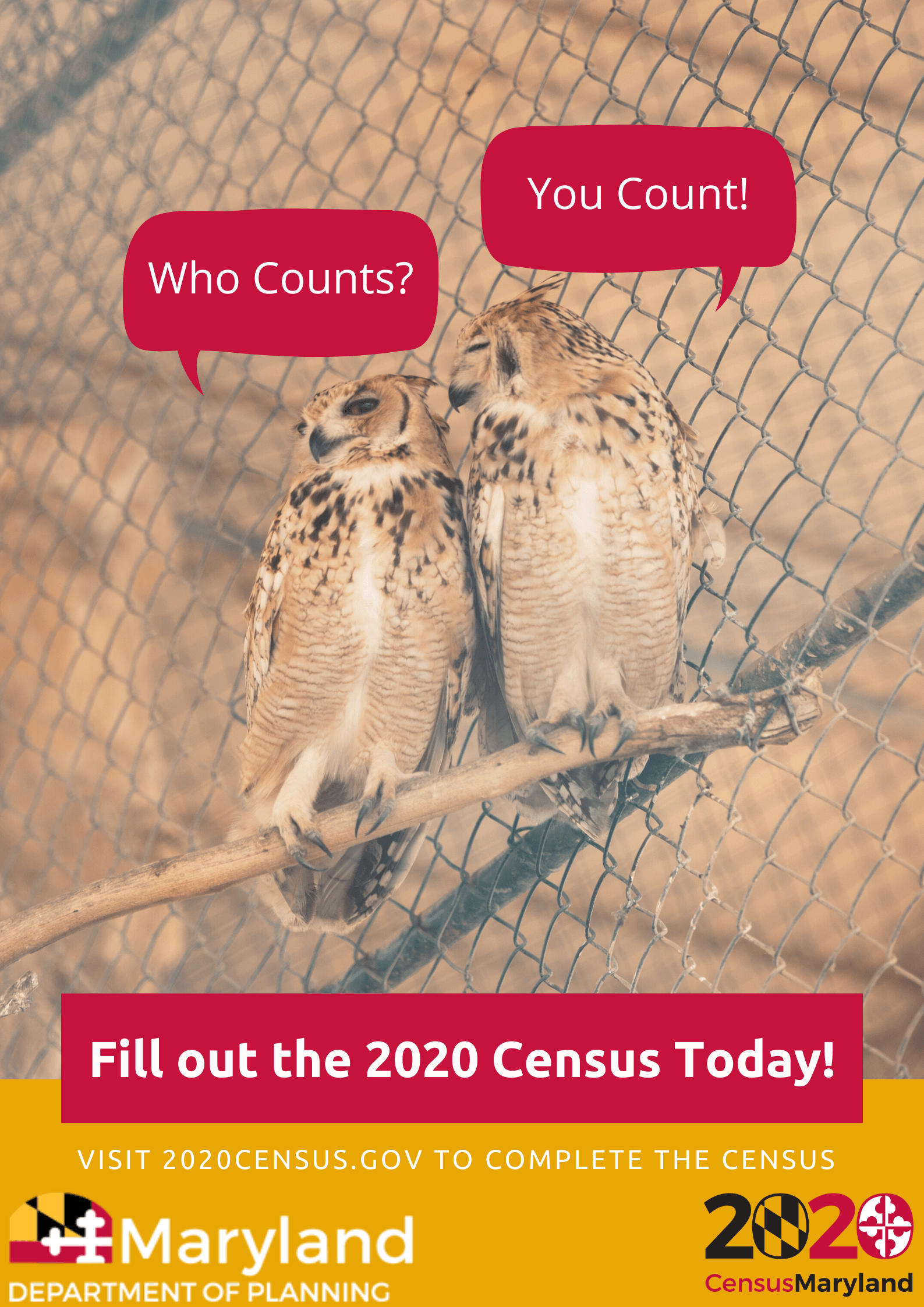 SM-Census-Owls