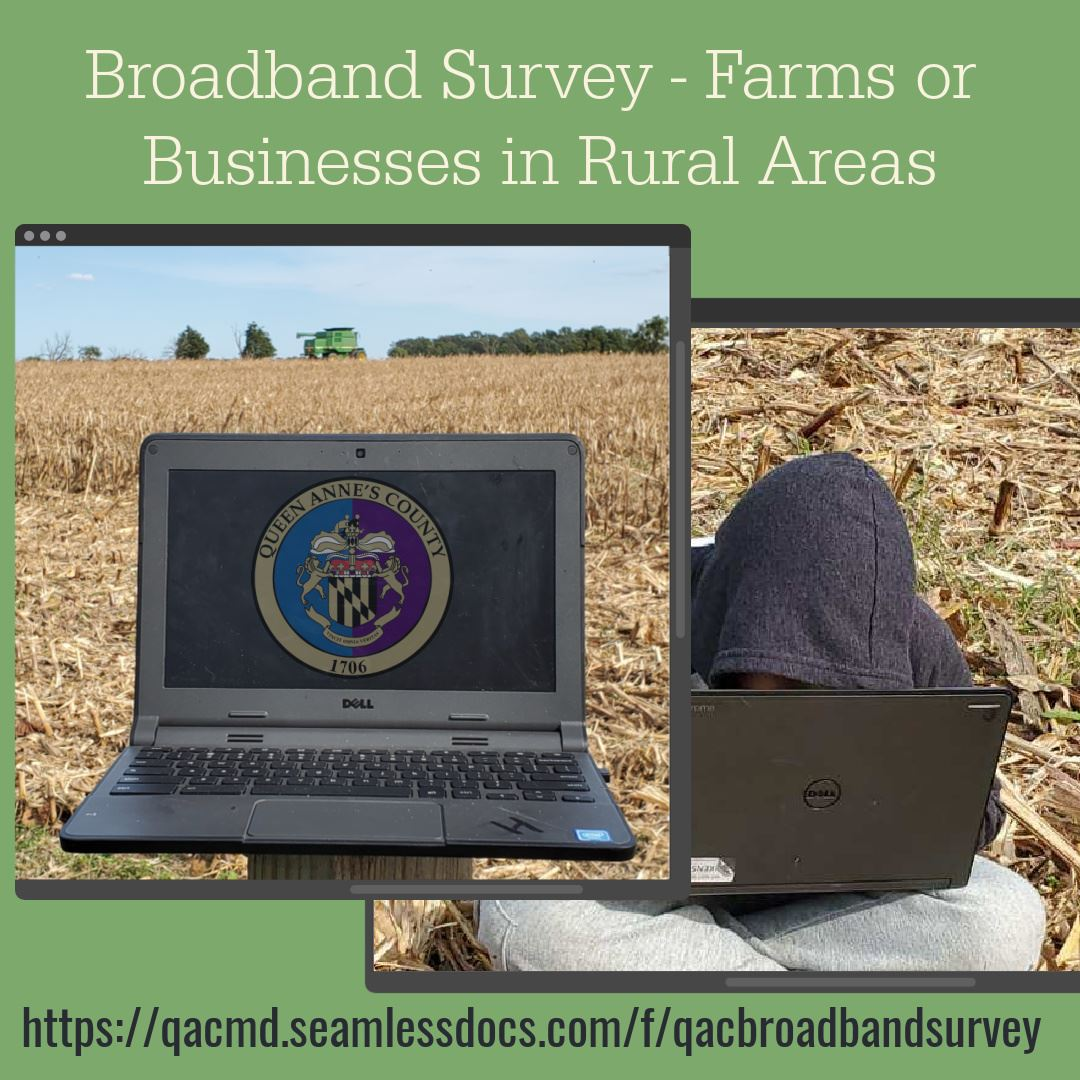 Broadband Survey